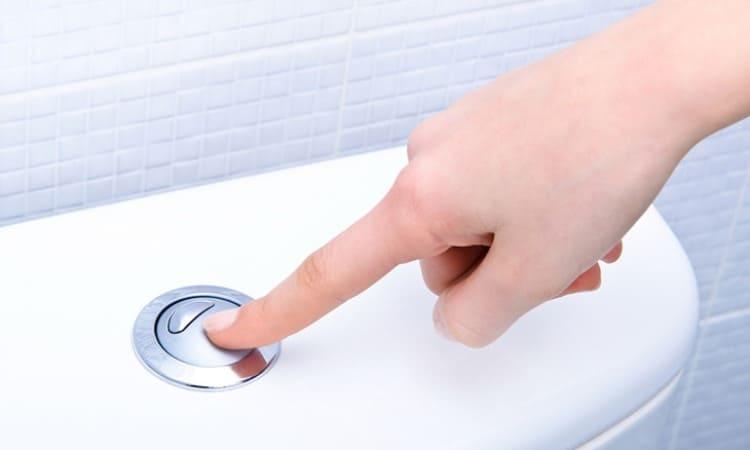 Кнопка туалета