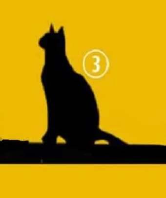 Кошка No3