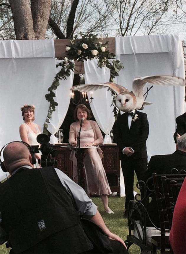 Свадебные фотографы всегда обладали чувством юмора: 7 нелепых фото со свадеб, которые подарят порцию настроения на весь рабочий день