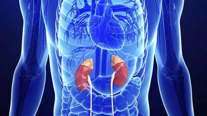 Симптомы адреналинового тела