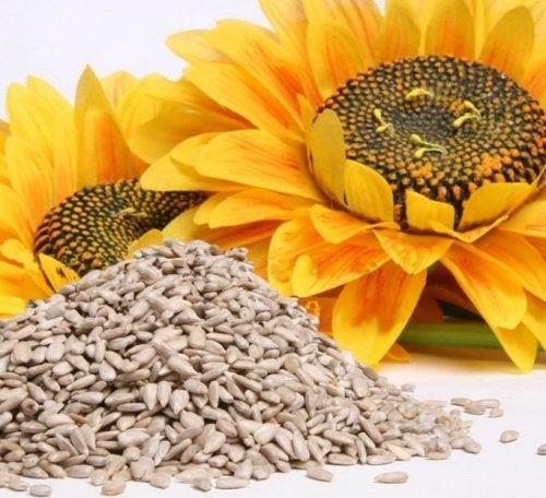 Отличная новость! Эти семена помогут восполнить запас кальция!