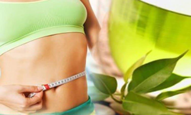 Зеленый чай с молоком для похудения: рецепт и отзывы