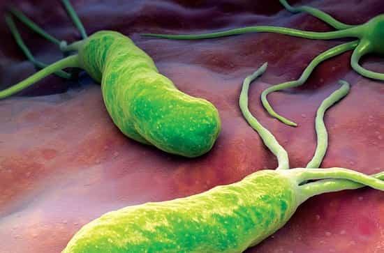 Вот как избавиться от бактерий, вызывающих изжогу, язву и вздутие живота