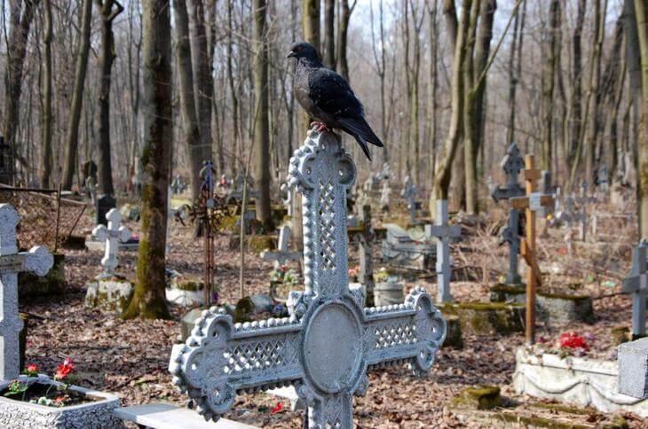 Чего нельзя делать на кладбище? Правдивые приметы из народа