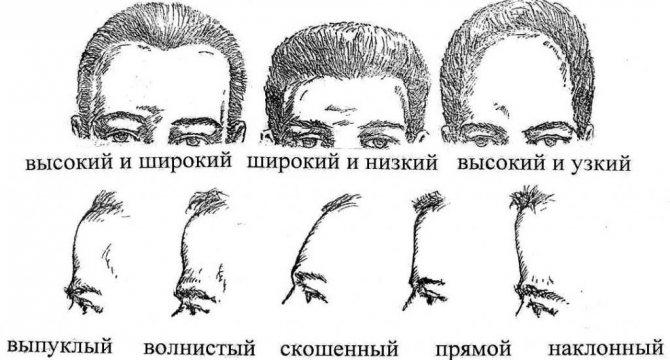 """""""Чтобы узнать человека, посмотри на его лоб"""": бабушкин совет не подвел ни разу в жизни"""