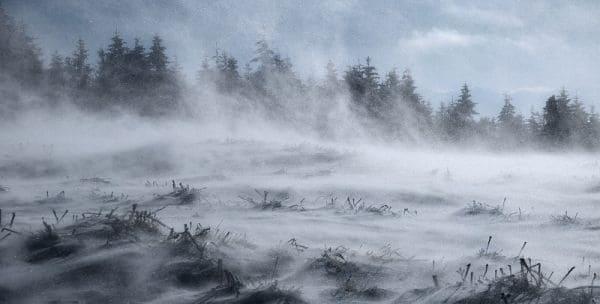 Сильный ветер или снежная буря