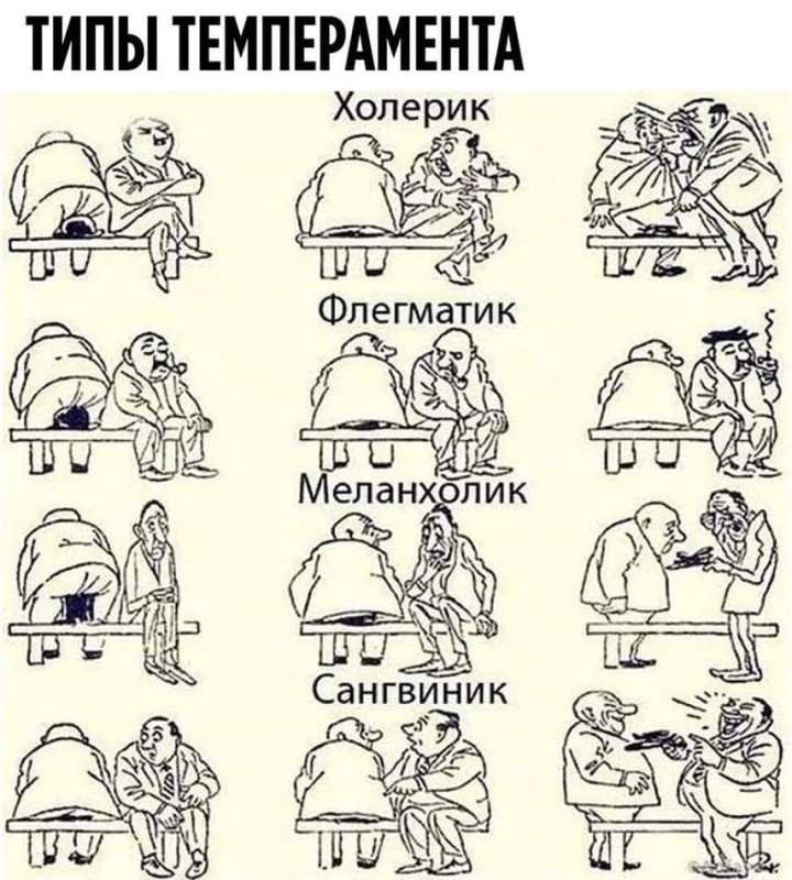 Тест на тип темперамента. Какой ваш — на самом деле